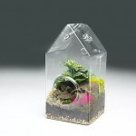 Tall Glass House in Display Tray